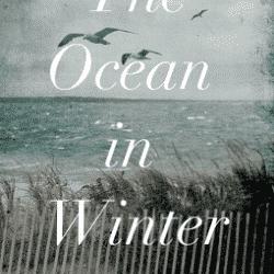 The Ocean in Winter