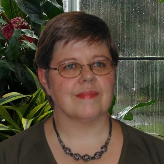 Carolyn Scott Mystery and Suspense Books
